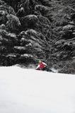 ο πρωτοπόρος bergamelli του 2011 τελ Στοκ Εικόνες