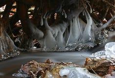 Ο πρώτος πραγματικά κρύος καιρός παγώνει το νερό κολπίσκου στοκ εικόνα με δικαίωμα ελεύθερης χρήσης