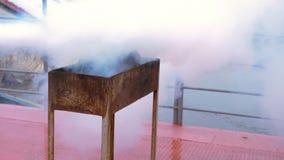 Ο πυροσβέστης γυναικών στο προστατευτικό κράνος και ομοιόμορφος εξαφανίζει τη φλόγα με τον πυροσβεστήρα στη σχάρα σχαρών Πυροσβέσ φιλμ μικρού μήκους