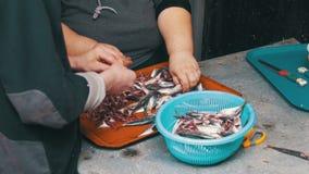 Ο πωλητής ψαριών καθαρίζουν και το φρέσκο ψάρι κοπής στην αγορά ψαριών φιλμ μικρού μήκους