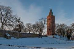 Ο πύργος χήνων στις καταστροφές κάστρων Vordingborg στη Δανία Στοκ Φωτογραφία