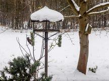 Ο δρυοκολάπτης τρώει από το σπίτι πουλιών Στοκ φωτογραφία με δικαίωμα ελεύθερης χρήσης