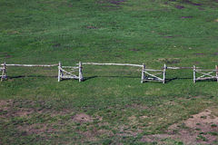 Ο ρωσικός φράκτης ύφους που γίνεται από τη σημύδα ξύλινη συνδέεται τον πράσινο χορτοτάπητα εγώ Στοκ εικόνες με δικαίωμα ελεύθερης χρήσης
