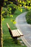 Ο δρόμος κάτω από το δέντρο Στοκ Εικόνα