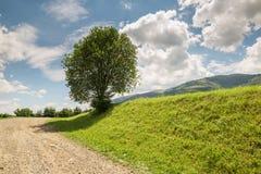 Ο δρόμος με το αμμοχάλικο τεντώνει επάνω το λόφο στοκ εικόνες