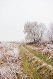 Ο δρόμος προς το τέλος του φθινοπώρου και του παγετού Στοκ φωτογραφία με δικαίωμα ελεύθερης χρήσης