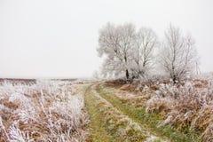 Ο δρόμος προς το τέλος του φθινοπώρου και του παγετού Στοκ εικόνα με δικαίωμα ελεύθερης χρήσης