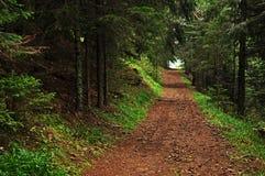 Ο δρόμος στην ελευθερία Στοκ φωτογραφία με δικαίωμα ελεύθερης χρήσης