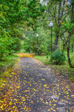 Ο δρόμος στο πάρκο Στοκ φωτογραφία με δικαίωμα ελεύθερης χρήσης