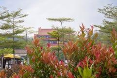 Ο δρόμος στο Po Lin μοναστήρι στο νησί Lantau Χογκ Κογκ Στοκ φωτογραφία με δικαίωμα ελεύθερης χρήσης