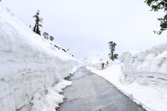 Ο δρόμος χάρασε από τη ισχυρή χιονόπτωση στην εθνική οδό Leh Manali που οδηγεί στο πέρασμα Rohtang κοντά σε Manali Himachal Prade Στοκ Εικόνες