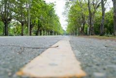 Ο δρόμος Στοκ φωτογραφία με δικαίωμα ελεύθερης χρήσης