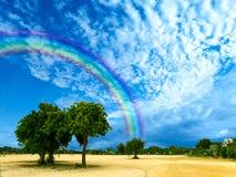 ο σαφής ουρανός ουράνιων τόξων μετά από τη βροχή εμπίπτει πρώτα στο καλοκαίρι Στοκ εικόνα με δικαίωμα ελεύθερης χρήσης