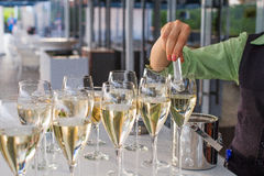 Ο σερβιτόρος ρίχνει ένα κάλυμμα στα γυαλιά κρασιού Στοκ φωτογραφία με δικαίωμα ελεύθερης χρήσης
