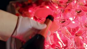 Ο σερβιτόρος χύνει τη σαμπάνια στα ποτήρια, κινηματογράφηση σε πρώτο πλάνο απόθεμα βίντεο
