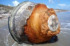 Ο σημαντήρας από τις Καραϊβικές Θάλασσες Στοκ Εικόνες