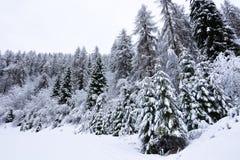 Ο σιβηρικός κρύος αέρας Στοκ εικόνες με δικαίωμα ελεύθερης χρήσης