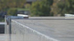 Ο σκέιτερ αλέθει το τέχνασμα 5-0 στην προεξοχή οδών, αρχιτεκτονικό μνημείο, κινηματογράφηση σε πρώτο πλάνο απόθεμα βίντεο