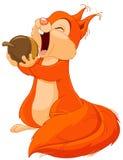 Ο σκίουρος τρώει το καρύδι απεικόνιση αποθεμάτων