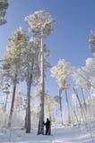 Ο σκιέρ είναι στο βαθύ χιόνι Στοκ Εικόνες