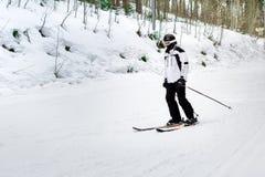 Ο σκιέρ κάνει σκι κάτω από την κλίση στα ξύλα Στοκ Εικόνα
