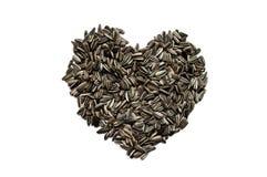 Ο σπόρος ηλίανθων δημιουργεί με το σπόρο καρδιών Στοκ Εικόνες