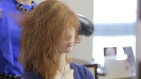 Ο στιλίστας κάνει τον επαγγελματικό προσδιορισμό για τα κορίτσια απόθεμα βίντεο