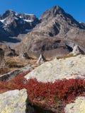 Ο συνταγματάρχης αρσίνη δ `, τάφος Λα, Hautes Alpes, ΓΑΛΛΊΑ στοκ εικόνες με δικαίωμα ελεύθερης χρήσης