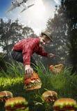 Ο συλλέκτης μανιταριών συλλέγει μόνο τα χάμπουργκερ Στοκ Φωτογραφία