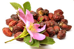 Ο σωρός των ξηρών φρούτων αυξήθηκε Στοκ Εικόνες