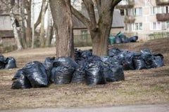 Ο σωρός των τσαντών απορριμάτων για παίρνει έξω καθαρίστε επάνω το πάρκο πόλεων την άνοιξη και το φθινόπωρο στοκ εικόνα