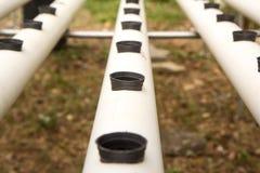 Ο σωλήνας PVC προετοιμάζεται για υδροπονικό Στοκ φωτογραφία με δικαίωμα ελεύθερης χρήσης