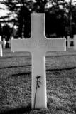 Ο τάφος και αυξήθηκε Στοκ φωτογραφία με δικαίωμα ελεύθερης χρήσης
