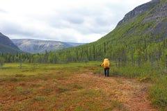 Ο ταξιδιώτης περνά από ένα έλος με ένα σακίδιο πλάτης στα βουνά Στοκ Φωτογραφίες