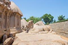 Ο ταύρος πίσω από Arjuna Ratha, μνημείο πέντε rathas, Mahabalipuram, Tamil Nadu, Ινδία Στοκ Εικόνες
