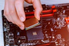 Ο τεχνικός βάζει την ΚΜΕ στην υποδοχή της μητρικής κάρτας υπολογιστών η έννοια του υλικού υπολογιστών, που επισκευάζει, στοκ εικόνα