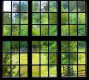 Ο τοίχος και το παράθυρο μιας παλαιάς αγροικίας μέσα με τα φύλλα σταφυλιών Στοκ φωτογραφία με δικαίωμα ελεύθερης χρήσης