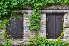 Ο τοίχος παραθύρων και κισσών μπροστινών πορτών ενός παραδοσιακού του χωριού hous Στοκ Εικόνες