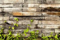 Ο τοίχος που αποσυντέθηκε ξεπέρασε το παλαιό ξύλινο κιβώτιο με τις τρύπες πουφαγώθηκαν κοντά Στοκ Φωτογραφίες