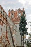 Ο τοίχος της μονής Novodevichy Στοκ Φωτογραφίες