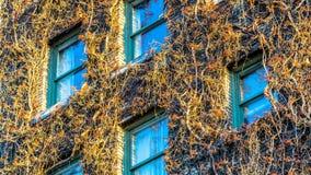 Ο τοίχος του ξενοδοχείου της Σύλβια στοκ φωτογραφίες