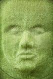 Ο τοίχος χλόης στη μορφή του προσώπου γυναικών Στοκ Φωτογραφία