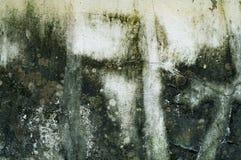 Ο τοίχος unclean έχει το υπόβαθρο σύστασης αλγών Στοκ φωτογραφίες με δικαίωμα ελεύθερης χρήσης