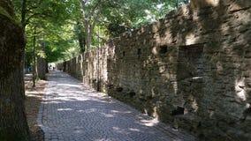 Ο τοίχος Visby Στοκ Εικόνα