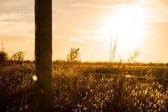 Ο τομέας ηλιοβασιλέματος Στοκ εικόνα με δικαίωμα ελεύθερης χρήσης