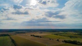Ο τομέας καλαμποκιού επηρεάζεται από την ξηρασία στοκ εικόνες με δικαίωμα ελεύθερης χρήσης