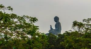 Ο τουρίστας επισκέφτηκε το γιγαντιαίο άγαλμα Tian Tan Βούδας στην αιχμή του βουνού Po Lin στο μοναστήρι στο νησί Lantau, Χονγκ Κο Στοκ Φωτογραφίες