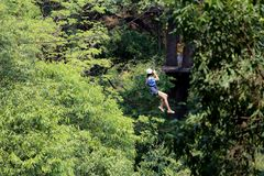 Ο τουρίστας περιπέτειας που εκσφενδονίζει στο δάσος Στοκ φωτογραφία με δικαίωμα ελεύθερης χρήσης
