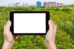 Ο τουρίστας φωτογραφίζει τα πράσινα δέντρα στο θερινό δάσος Στοκ φωτογραφίες με δικαίωμα ελεύθερης χρήσης