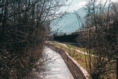 Ο τρέχων ποταμός στο υπόβαθρο των δέντρων στοκ φωτογραφίες